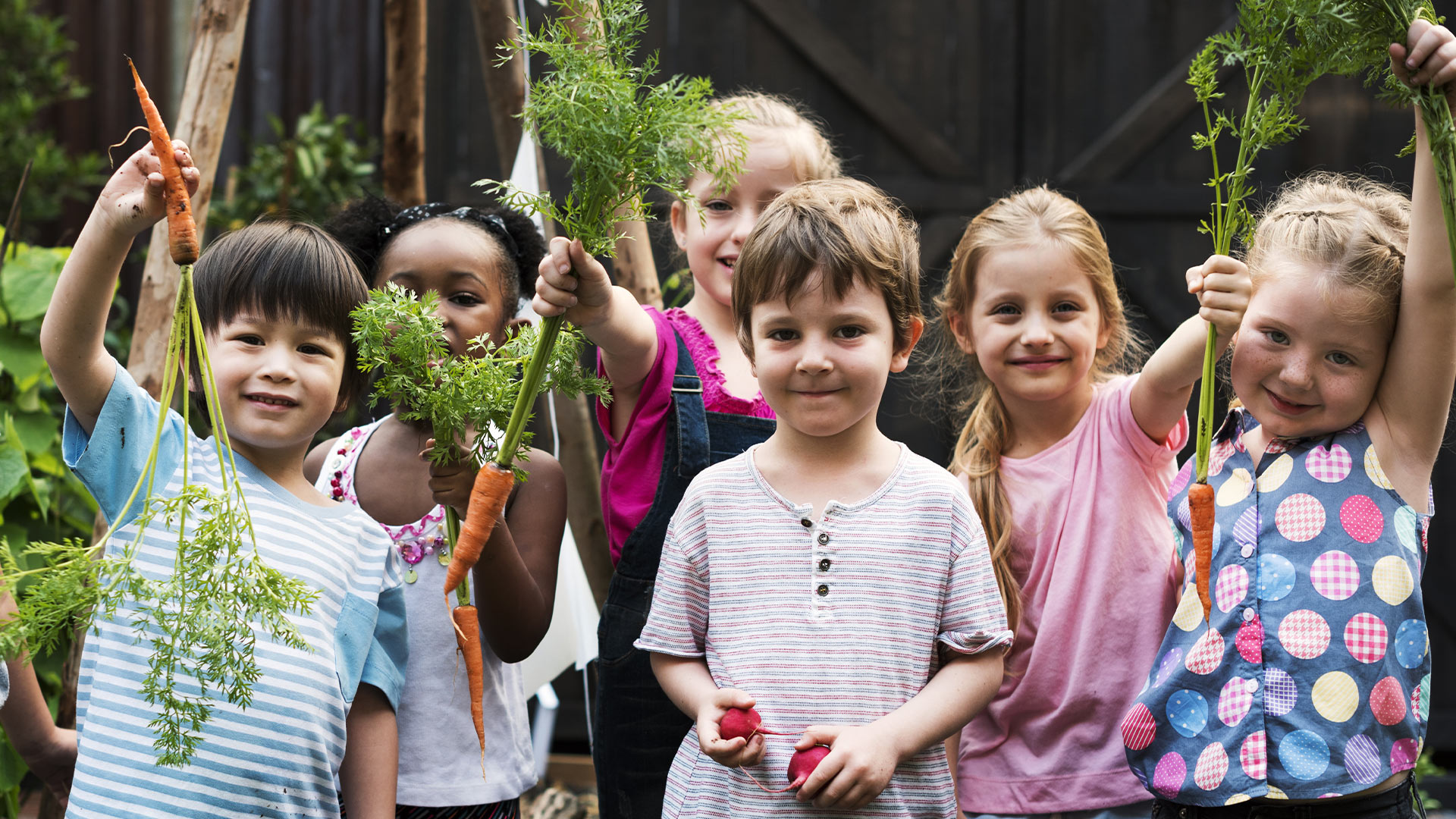 kids learning about vegetables and plants